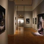 Les nouveaux talents de la photographie européenne, Montpellier, 2012