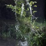 waterfalls II.4, 2011